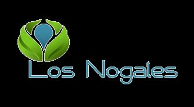 logo cn web